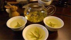 黄茶是怎么制成的?